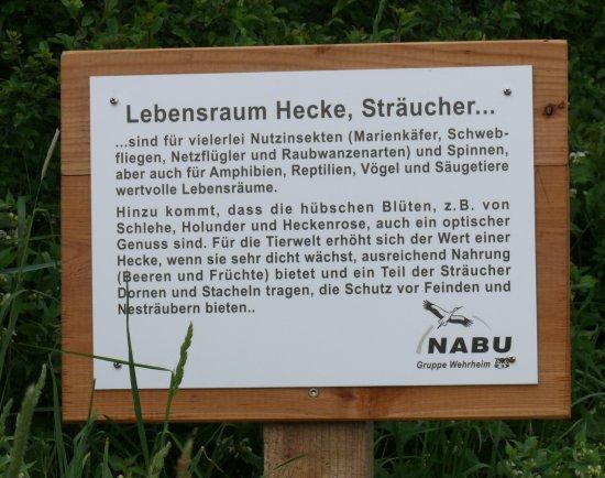 eine informationstafel zum thema hecke auf dem nabu schutzgebiet binsenwiesen im bizzenbachtal. Black Bedroom Furniture Sets. Home Design Ideas